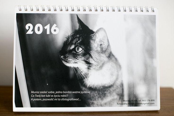 Koci kalendarz biurkowy 2016 w Fotografia Monika Małek na DaWanda.com