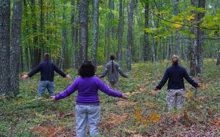 An emerging mindfulness practice, forest bathing is exactly what it sounds like
