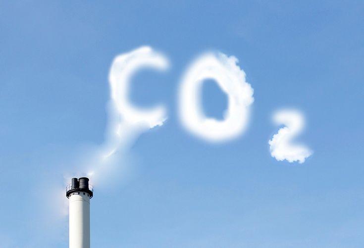 O ciclo do carbono e sua relação com o efeito estufa.