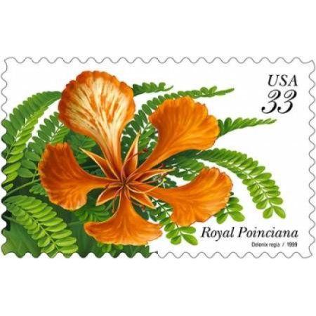 Royal Poinciana Canvas Art - US Postal Service (24 x 36)