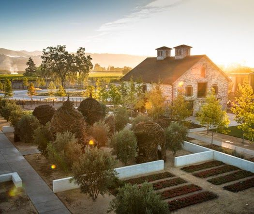 HALL Winery // St. Helena, California. This was Richie's and my first stop! Beautiful!