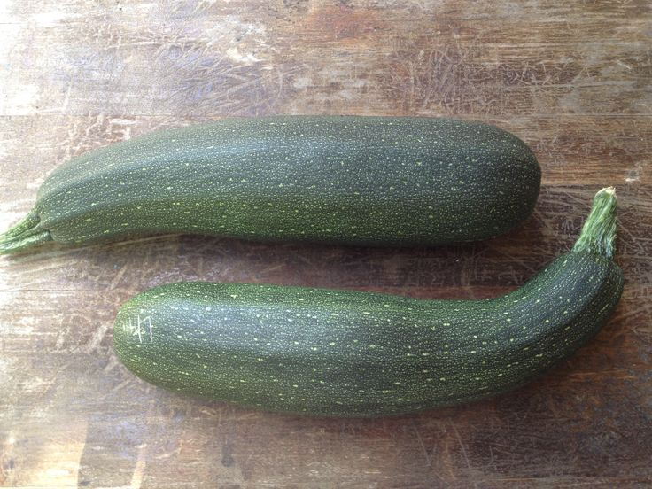 Like whales aren't they. Zucchinis from my garden.