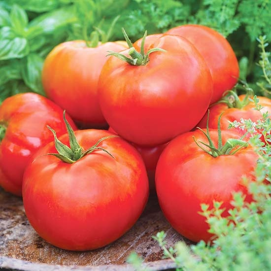 New fruit and veggies for 2012: Summer Veggies, Plants Tomatoes, Daddy Tomatoes, Fruit And Veggies, Gardens Vegetables, Vegetables Variety, Big Daddy, Fruit Veggies, Fruit And Vegetables