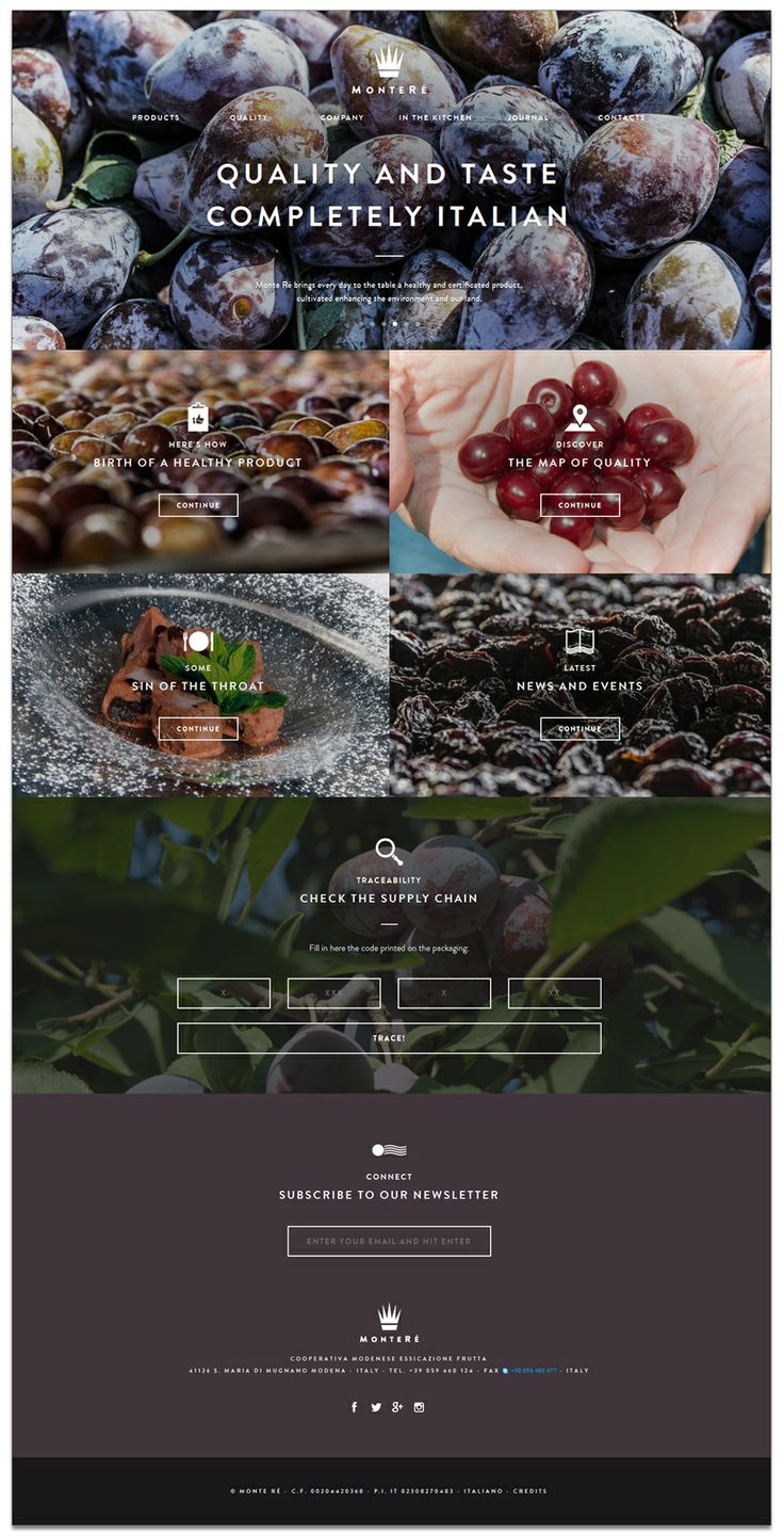 Montere Web Design Inspiration