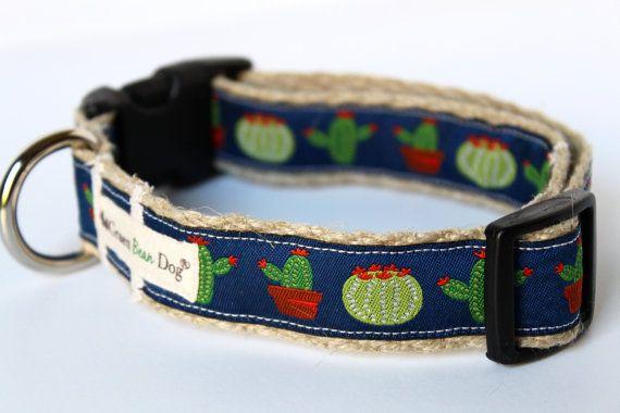 Cactus Dog Collar Southwest Dog Collar Adjustable by GreenBeanDog