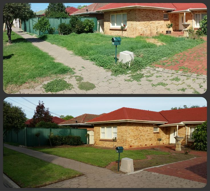 Lawn Mowing, Edging, Weeding, Spraying, Pruning, Clean-Up and General Tidy. Regular maintenance, 2 Months since the original photo and already a huge difference!  What can Trusted do for you?