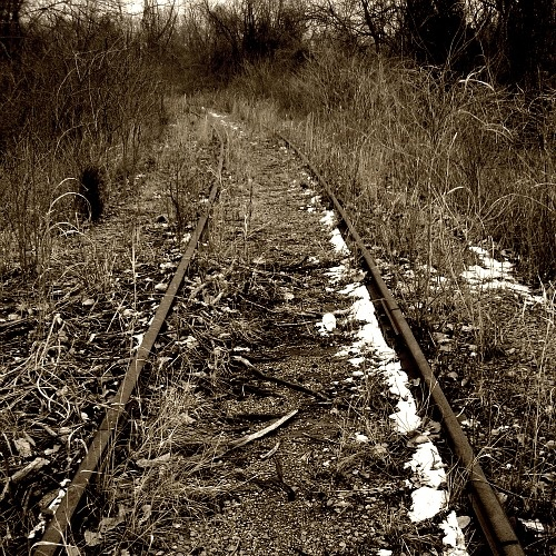 Make your way down the old railroad tracks: Railroad Track