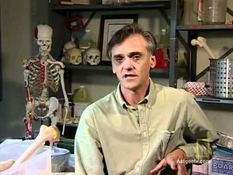 Secrets of the Body Farm 2/3