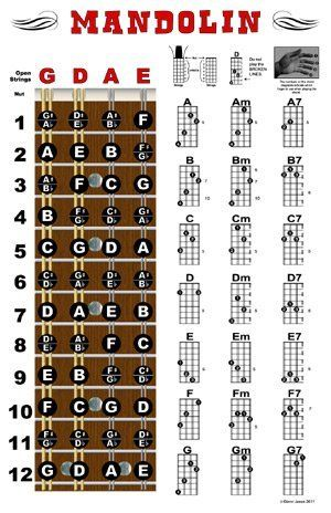 Mandolin Fretboard and Chord Chart Instructional Poster by Triple-G Posters.