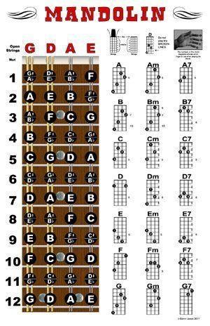 124 Best Mandolin Images On Pinterest Mandolin Guitar And Bathroom