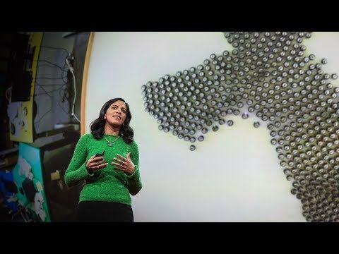 What intelligent machines can learn from a school of fish | Radhika Nagpal - YouTube