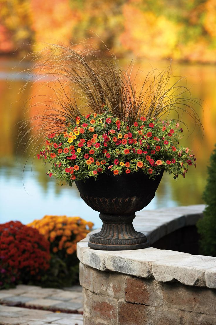 .: Container Garden, Fall Flowers, Idea, Fall Planters, Fall Colors, Flowers Pots, Plants, Gardens, Front Porches