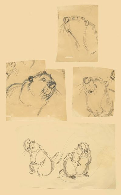 Deja View: Milt's Design Doodles for the Beaver | © Walt Disney Animation Studios*  • Blog/Website | (www.disneyanimation.com) • Online Store |  (www.disneystore.com) ★ || CHARACTER DESIGN REFERENCES™ (https://www.facebook.com/CharacterDesignReferences & https://www.pinterest.com/characterdesigh) • Love Character Design? Join the #CDChallenge (link→ https://www.facebook.com/groups/CharacterDesignChallenge) Promote your art in a community of over 50.000 artists! || ★