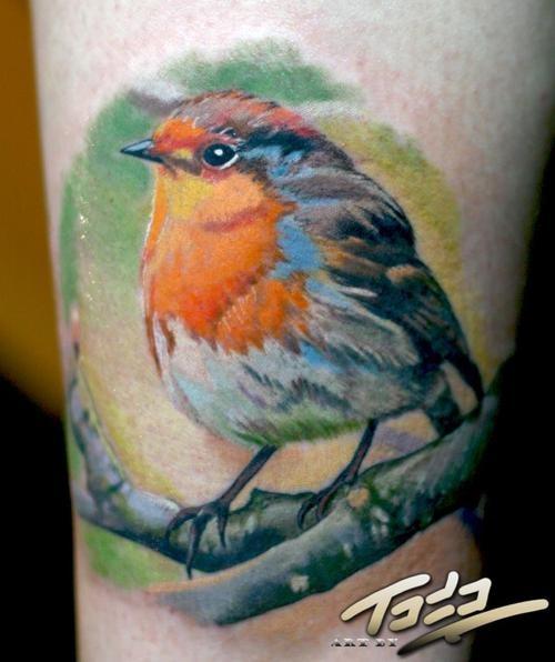realistic bird tattoo | Tattoos | Pinterest | Realistic ...