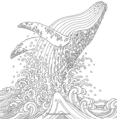 25+ einzigartige ausmalbilder fische ideen auf pinterest
