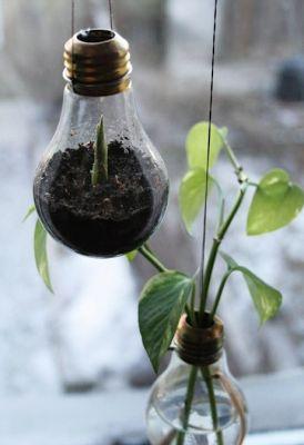 Récup ampoules pour boutures de fleurs Pinterest via Nat et nature