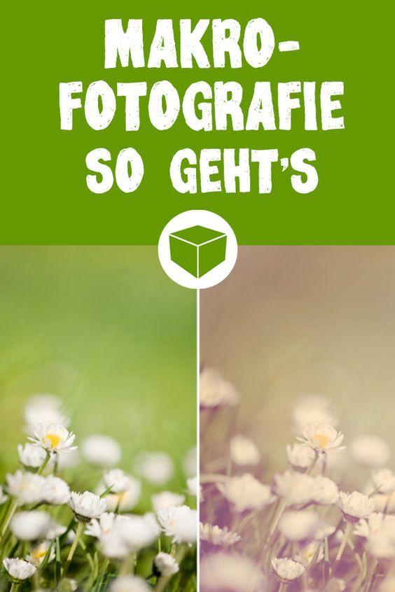 Makrofotografie im Frühling: einfache Tipps von Profi-Fotografin Kerstin Schwister