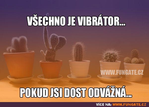FunGate.cz je tvá brána do světa zábavy. Najdeš zde obrázky, videa, gify, online hry, zajímavosti, vtipy a další...   Všechno je vibrátor...