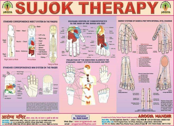 Sujok Acupressure Points Chart | Acupressure Points