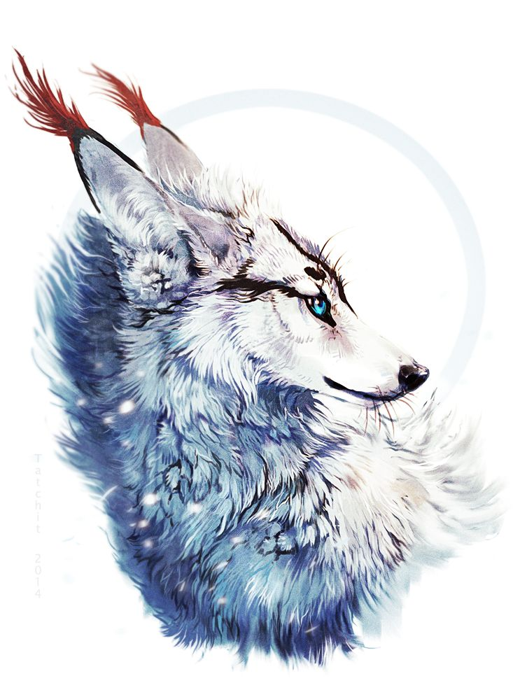 Best 25 cool wolf drawings ideas on pinterest wolf for Cool fantasy drawings