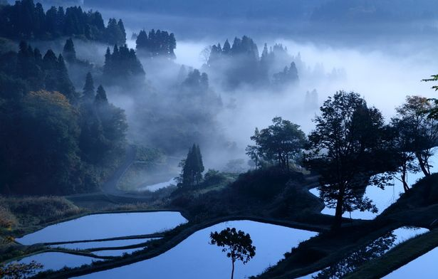 Terraced rice fields in Kamou, Niigata, Japan: I 3 Photo, Japan Photo, Japan Landscape