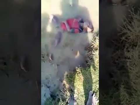 Rohingya massacre by Myanmar army on 12.11.16