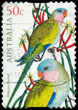 Princess Parrot - Postage stamp from Australia