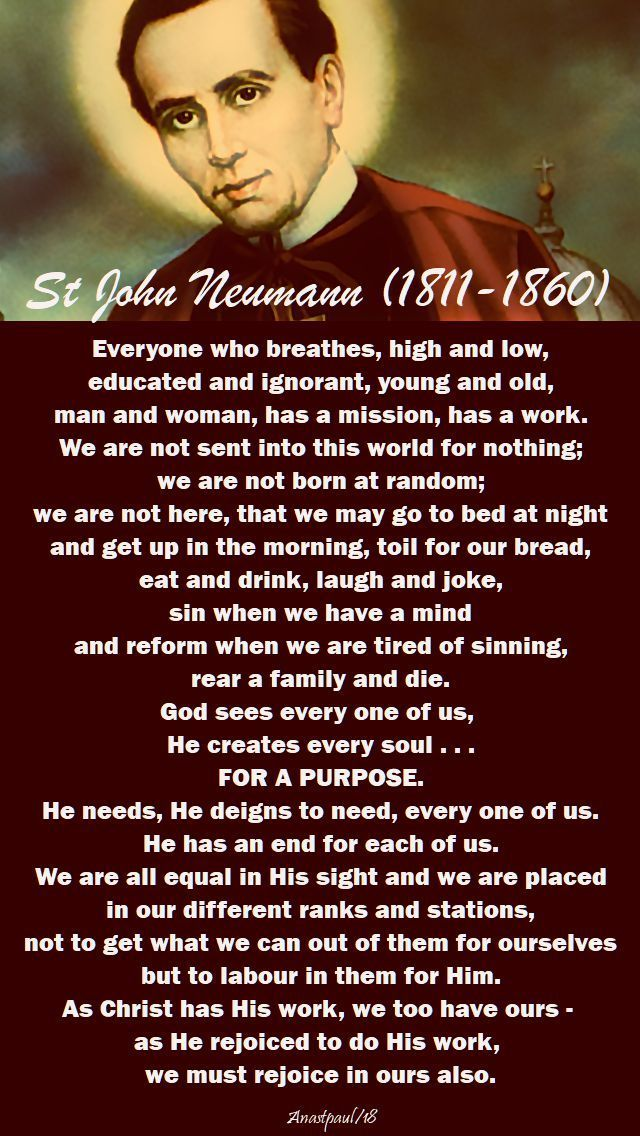 "Quote of the Day – 5 January – The Memorial of St John Neumann (1811-1860)  ""Everyone who breathes, high and low, educated and ignorant, young and old, man and woman, has a mission, has a work. We are not sent into this world for nothing; we are not born at random; we are not here, that we may go to bed at night..#mypic"