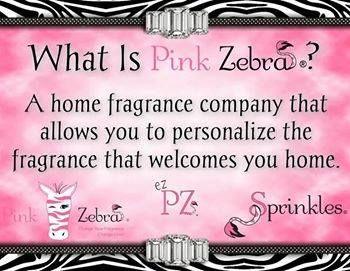 What is Pink Zebra https://www.pinkzebrahome.com/carolrhodes