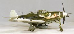 Hasegawa 1/48 P-39 Airacobra Air-A-Cutie