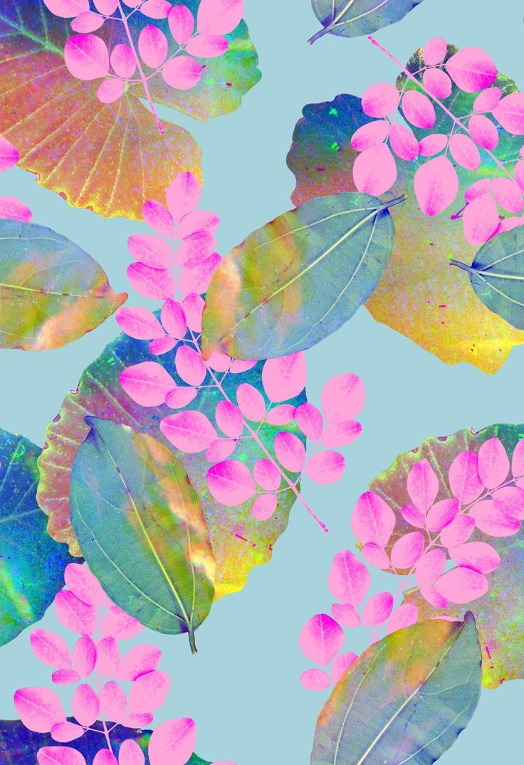 Tyler Spangler #florals #photographic