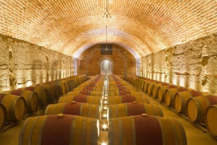 17 best images about wine cellar on pinterest trips for Cost to build a wine cellar