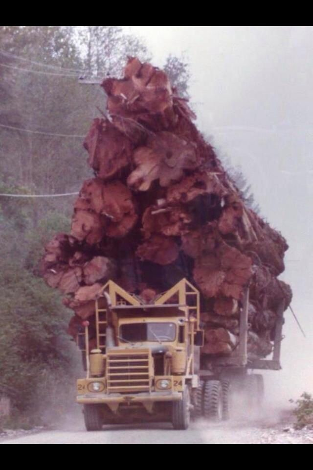 184 best Logging Trucks images on Pinterest | Big trucks, Semi ...