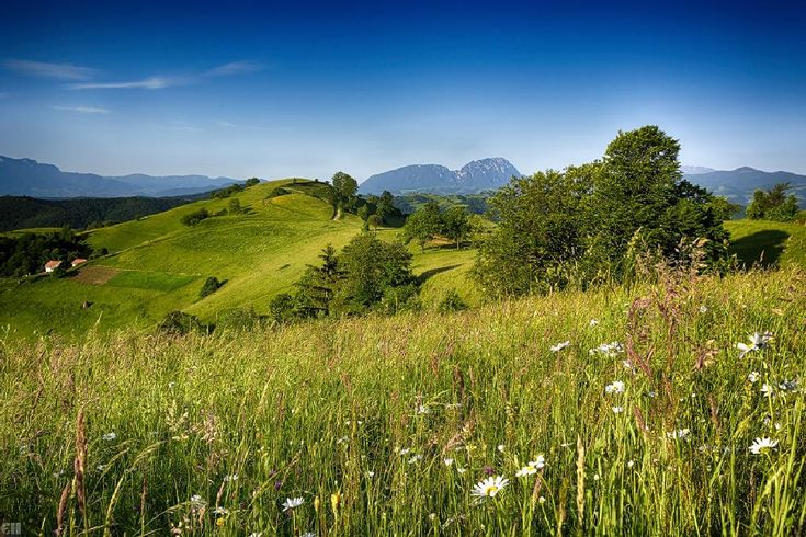warm early summer morning on mountains by constantin.hurghea