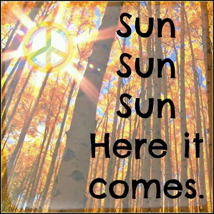 Good Morning Sunshine Lyric : Best here comes the sun beatles images on
