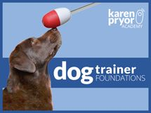 something to consider (clicker training recommended by Rachael)