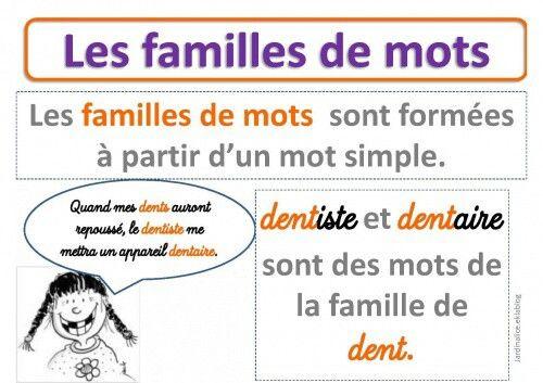 famille de mots | Education de base (apprendre le français ...