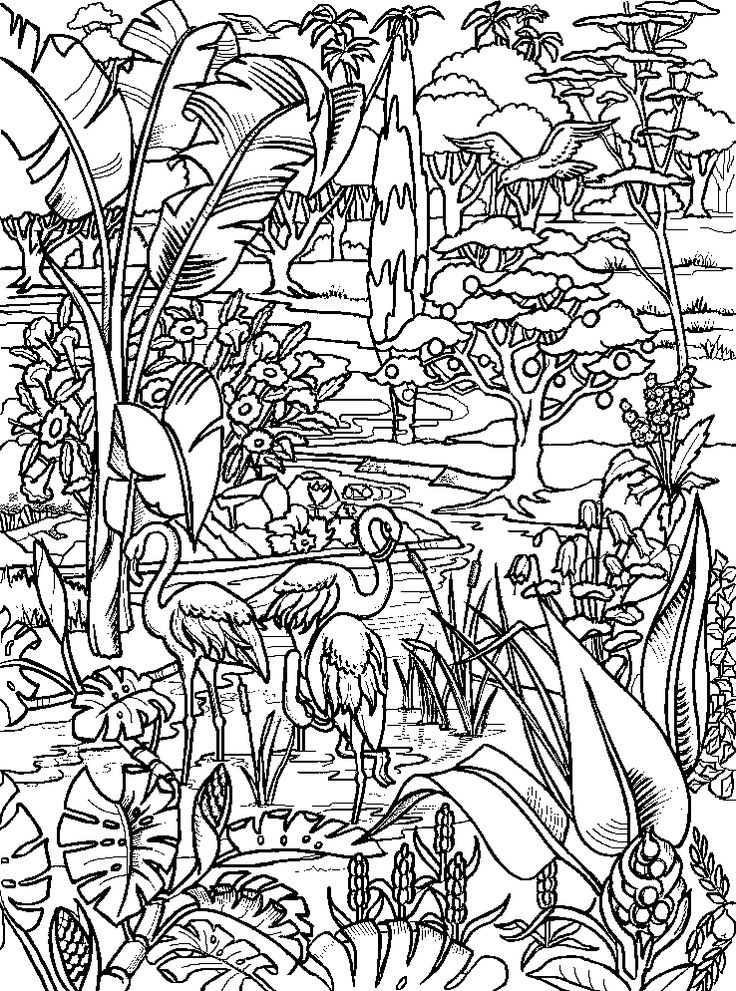 54 best images about adam eve creation on pinterest maze for Garden of eden coloring page