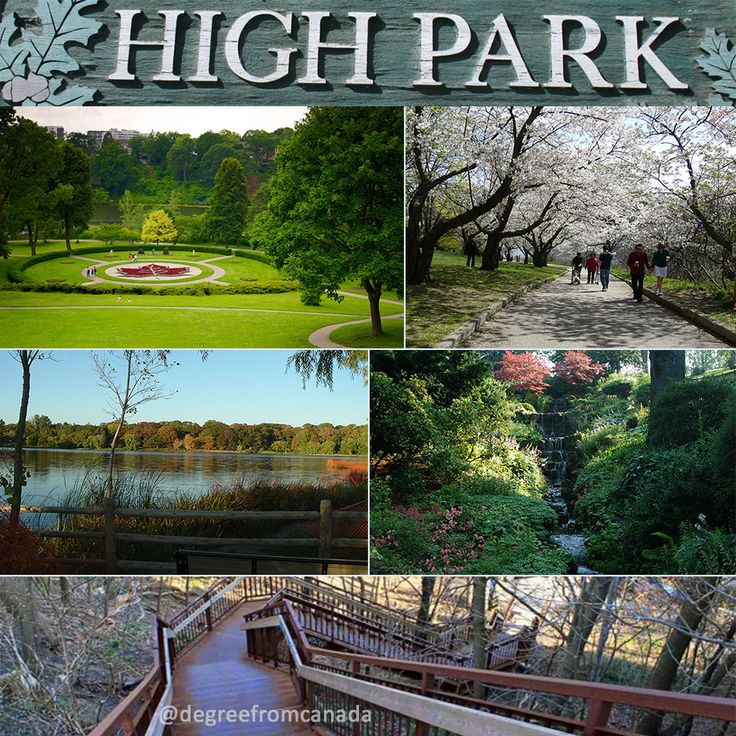 High Park is a municipal park in Toronto, Ontario, Canada. It spans 161 hectares (400 acres), and is a mixed recreational and natural park, with sporting facilities, cultural facilities, educational facilities, gardens, playgrounds and a zoo. One third of the park remains in a natural state, with a rare oak savannah ecology. #highpark #toronto #toronto_insta #torontotravels #torontolife #torontophoto #wethenorth #lessismore #white #bloggerlife #bloggerstyle #photography #colourless #nikon…