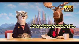 Zootopia pelicula completa en español latino - YouTube