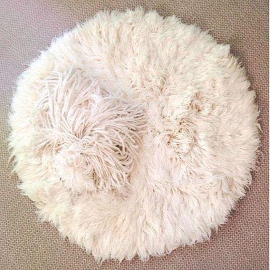 """Mark Zuckberg's family's Puli """"Beast"""" blending into sheepskin rug"""