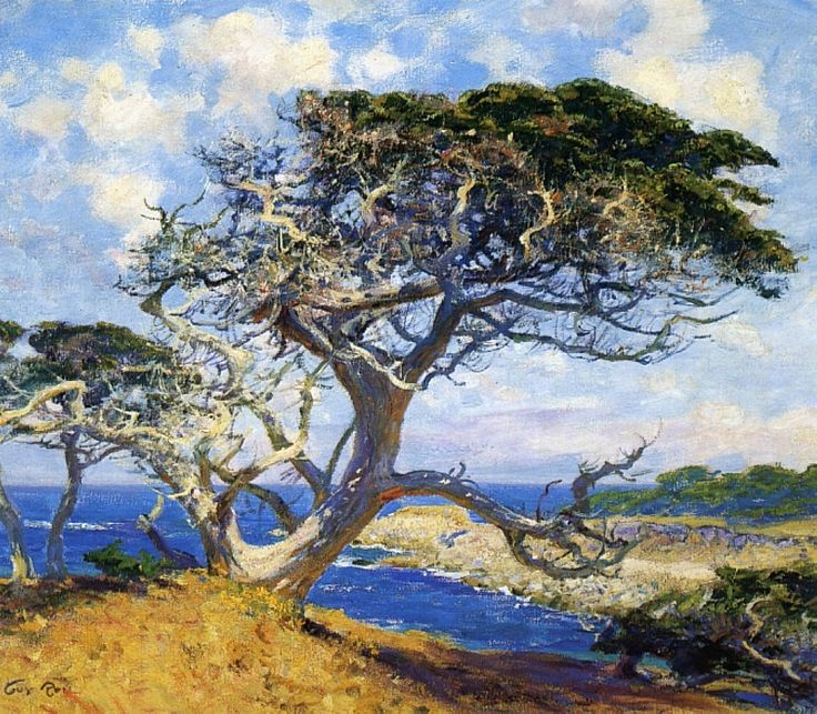 Guy Rose (1867-1925) - Monterey Cypress