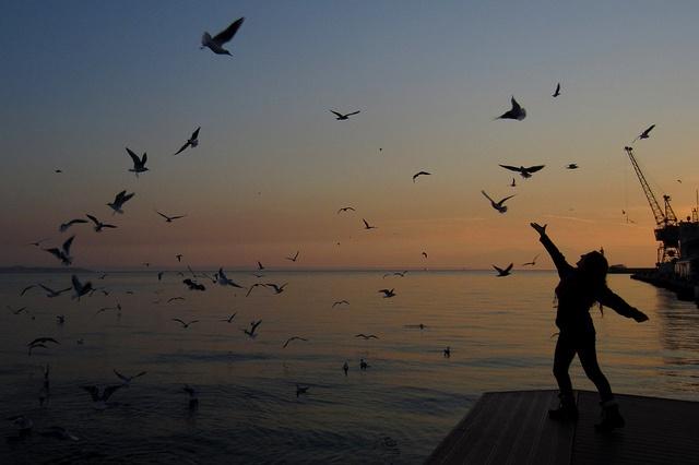 ...και η θάλασσα είναι απέραντη, τα πουλιά μυριάδες, οι ψυχές όσες και οι συνδυασμοί που μπορούν να γεννήσουν οι ήχοι και τα λόγια, όταν ο έρωτας και το όνειρο συμβασιλεύουν (Ο.ΕΛΥΤΗΣ)