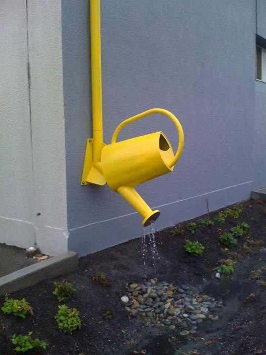 Water can at the end of a rain gutter! Great idea!