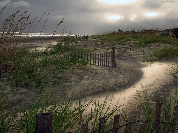 Hilton Head Beach, Hilton Head Island SC by Jim Tardio