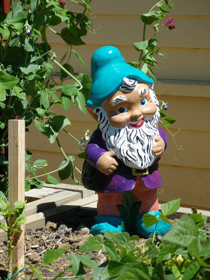 Gnome In Garden: 17 Beste Afbeeldingen Over Kabouters Op Pinterest