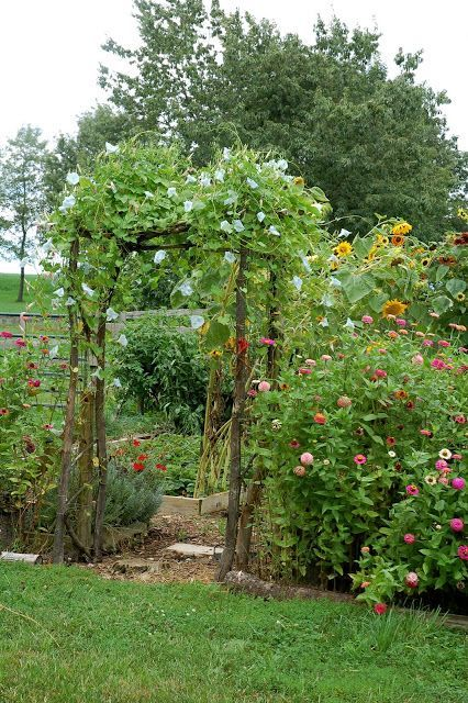 Beautiful entrance to a vegetable garden