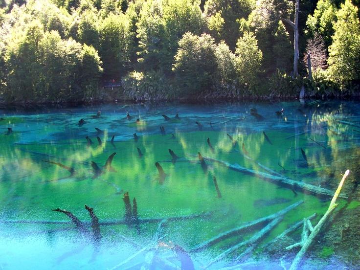 Conguillío, Chile! De fotógrafos a naturalistas ,muchos coinciden en que este Parque Nacional, ubicado al noreste de Temuco se convierte en un alucinante y colorido espectáculo. Rodeado de araucarias, no es necesario ser un excepcional fotógrafo. Sólo basta hacer click y la belleza natural se encargará del resto.