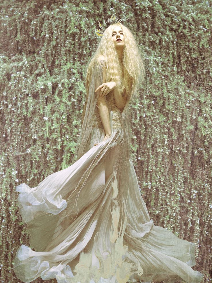Allison Harvard (Cycle 12) - Page 250