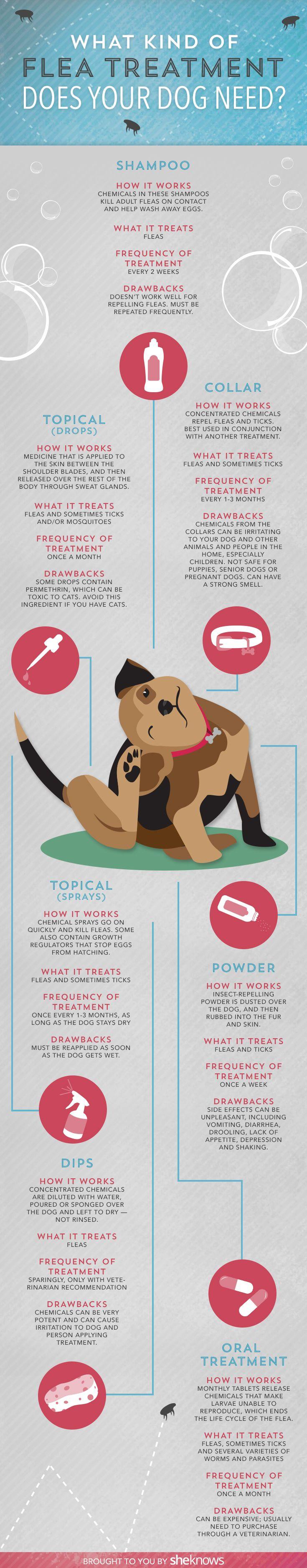 34 best Flea & Tick Prevention images on Pinterest | Pet health ...